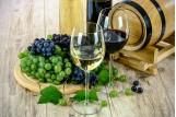 Autour du vin et Oenologie