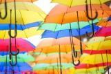Parapluies, Bonnets et Chapeaux